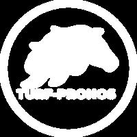 turf pronos logo blanc